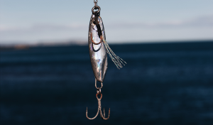 how to detect a phishing scam